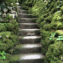 Quinta da Regaleira - Escalier © Sandrine Tellier