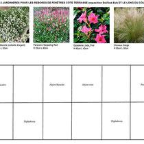 Palette végétale et plan de plantation des jardinières au soleil