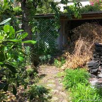 Comment préserver la biodiversité ? Tas de branchages au fond de mon jardin - © Sandrine Tellier
