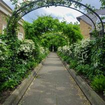 L'entrée, Saint John's Lodge garden, Regent's Park, Londres  - © Sandrine Tellier