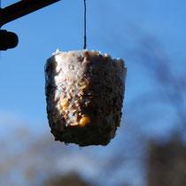 Boule de graines pour oiseaux - Une autre version faite dans un petit bocal (avec 2 allumettes reliées plongées dans le mélange pour intégrer le lien), puis démoulée après séchage - © Sandrine Tellier