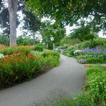 Duke's garden