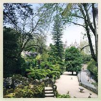 Quinta da Regaleira - Grande allée menant au palais © Sandrine Tellier