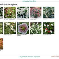 Exemple de palette végétale