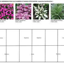 Palette végétale et plan de plantation des jardinières à l'ombre