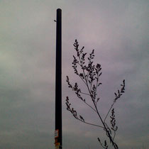 Наши внутренние электросети, середина октября 2012 г.