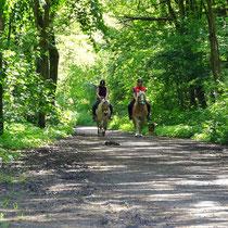 Der Wernerwald Sahlenburg mit Pferden und Reitern