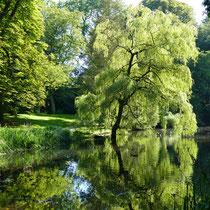 Der Schlossgarten von dem Schloss Ritzebüttel in Cuxhaven