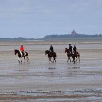 Pferde im Watt zischen Cuxhaven und der Insel Neuwerk