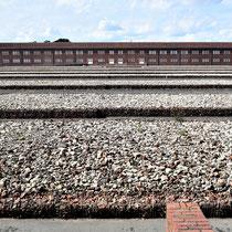Gevangenenkamp - zicht over barakken naar gebouw 1