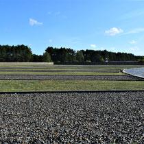 Bij monument met zicht op gevangenenbarakken rechts op de foto - naast de barakken de kampgevangenis