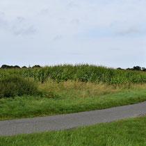 02. Locatie voormalige kampterrein Brual-Rhede