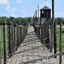 Afscheidingshekken Majdanek 3
