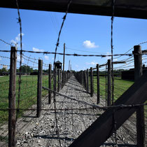 Afscheidingshekken Majdanek