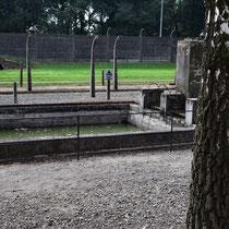 Zwembad Auschwitz