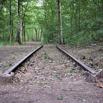 87) Een deel van de oude kampspoorlijn in het bos