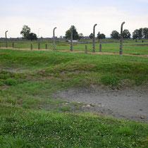 Massagraven Birkenau - vlakbij crematorium - hier werden de lijken verbrand