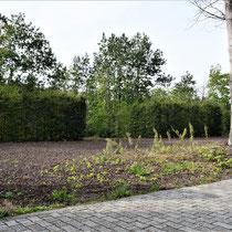 Zicht links vanaf ingang gevangenenkamp - waar de bomen staan stonden de barakken