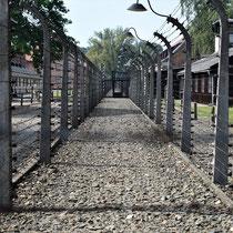 Afscheidingshekken Auschwitz