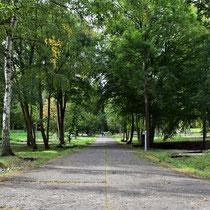Plek waar de barakken stonden achter in het bos