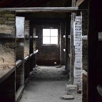 Stenen barak Birkenau - originele slaap barak gevangenen