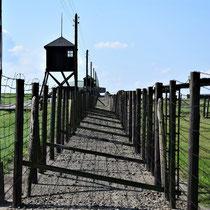 Afscheidingshekken Majdanek 4