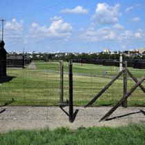 Barakken voor gevangenen Majdanek - incl. beeld adelaar/ duif