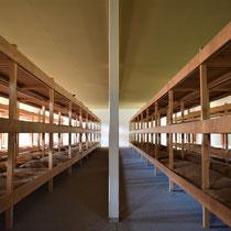 35) Slaapzaal voor gevangenen in Barak 13B