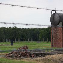 Watervat en fusilladeplaats (bij zwarte monument) Birkenau