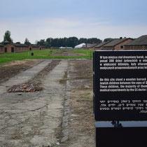 Restanten stenen barak Birkenau - met slachtoffers van Josef Mengele