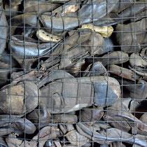 Schoenen gevangenen Majdanek