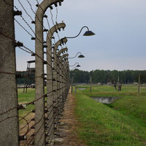 Afscheidingshek Birkenau