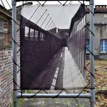 46. Oude foto van het pad achter de voormalige barakken welke liep van de doucheruimte naar de barakken en cellen voor de gevangenen