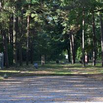 Pad naast woning kampcommandant met herdenkingsmonumenten