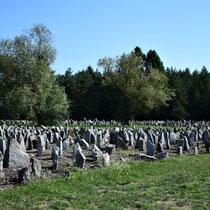 Overzicht memorial stenen 3