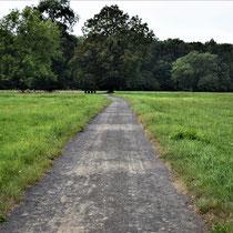 Weg naar het witte huisje Birkenau - links en rechts de massagraven met vele Nederlanders