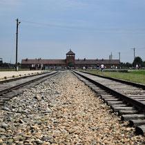 Spoorlijn Birkenau - met zicht op wachttoren
