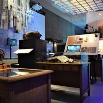 14) Overzicht van expositie