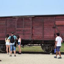 Treinwagon Birkenau - met origineel onderstel