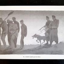 ...Bewaakt en gevolgd door honden