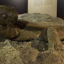 Schildpad Majdanek