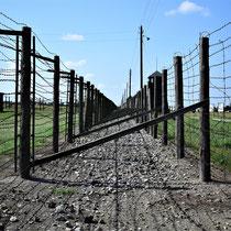 Afscheidingshekken Majdanek 2
