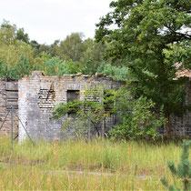 Oud huisje in Siemenskamp