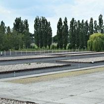 Gevangenenkamp - zicht vanuit gebouw 2 naar links