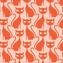 Orange Taby Cat