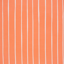 Stripes Coral