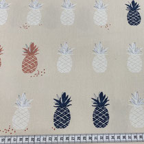 AGF: Pineapples