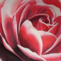 """""""Rose"""" Pastellkreidezeichnung, 50 x 60cm, 2006"""