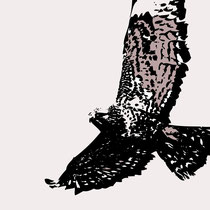 der Vogel Koreh