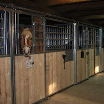 Pferdestall für Urlaub mit dem eigenen Pferd